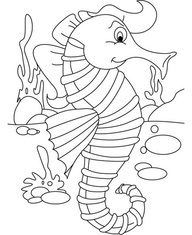 seahorse template - animal templates | free & premium templates - Cute Baby Seahorse Coloring Pages