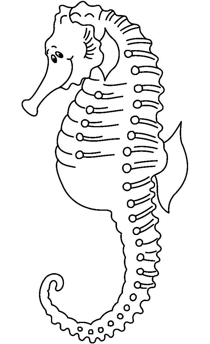 65 Sea Creature Templates Printable Crafts Colouring Pages