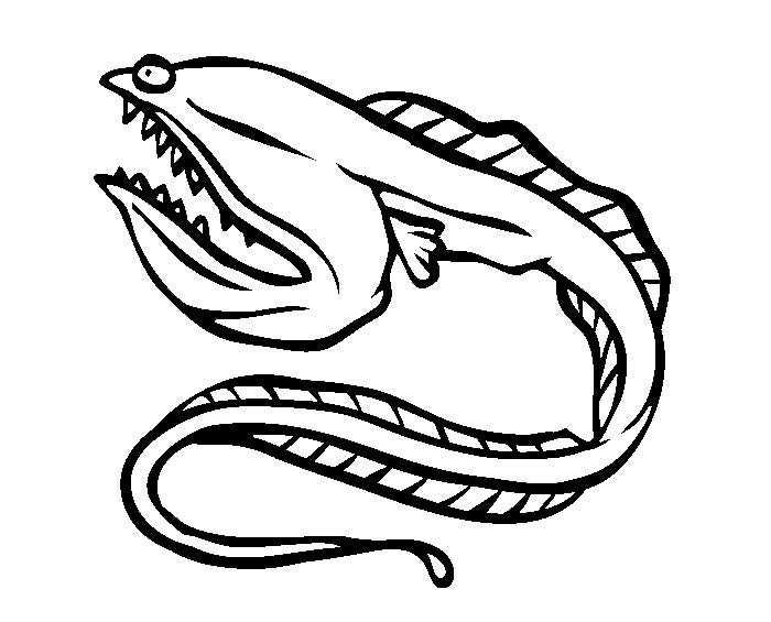 coloring pages of orca whales eels octopus | 65+ Sea Creature Templates - Printable Crafts & Colouring ...