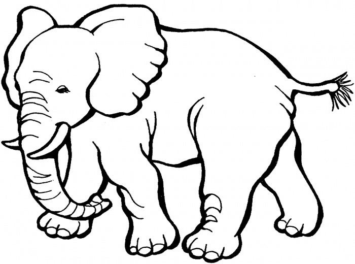 picture regarding Printable Elephant Stencil referred to as Elephant Template - Animal Templates Cost-free Quality Templates