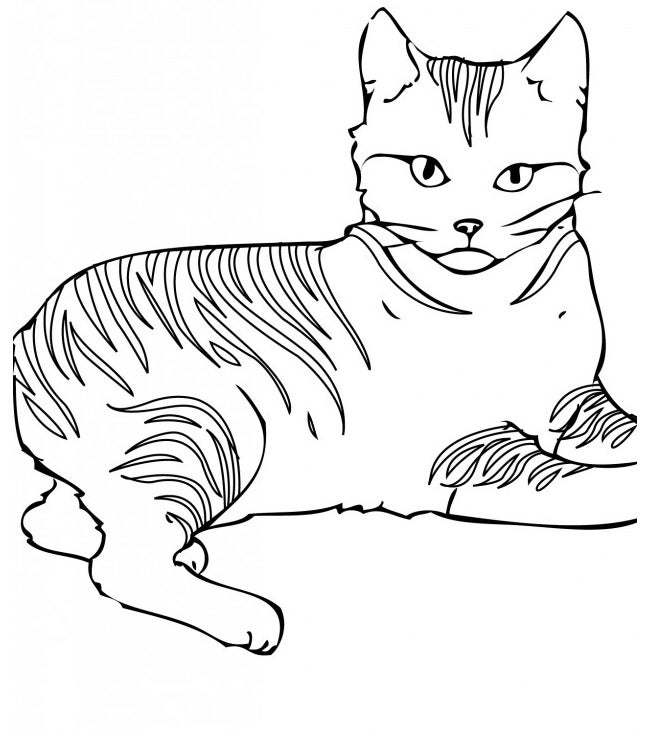 photograph about Cat Stencil Printable called Cat Condition Template - Animal Templates Absolutely free Quality Templates
