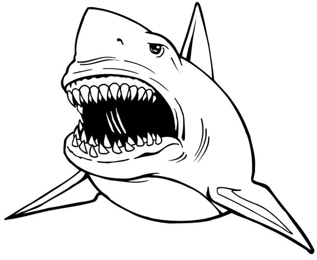 55 shark shape templates crafts amp colouring pages