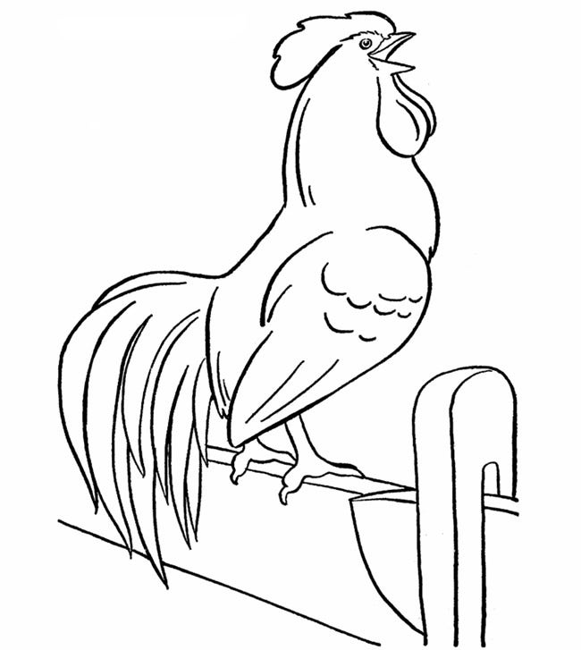 Printable online animal coloring pages ~ Chicken Template - Animal Templates | Free & Premium Templates