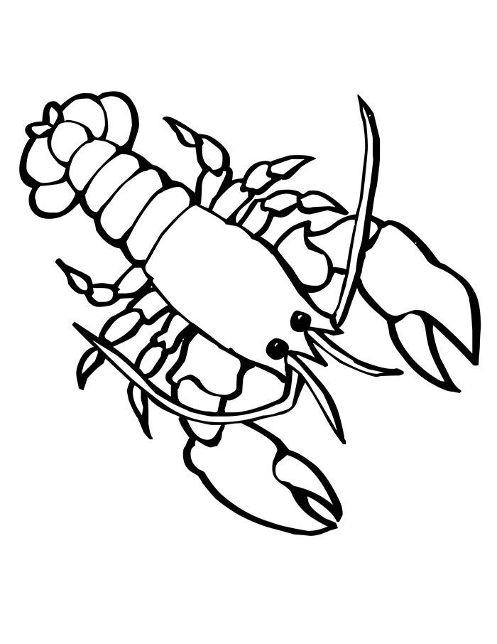 ocean creatures coloring pages - photo#12