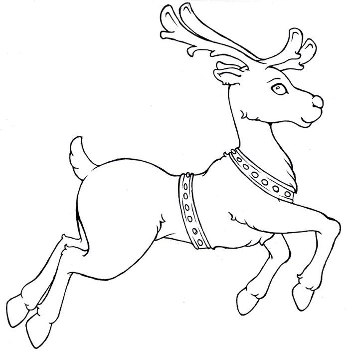 Reindeer template animal templates free premium for Reindeer coloring pages