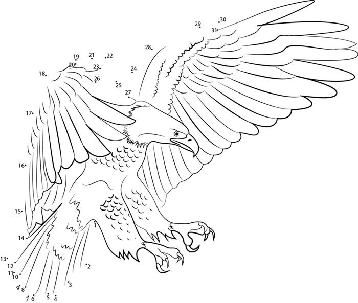eagle template animal templates free premium templates