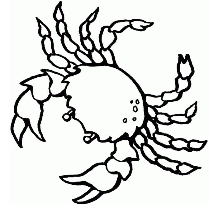 65 Sea Creature Templates Printable Crafts Colouring Sea Creature Coloring Pages