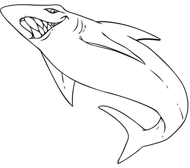 Smiling Shark Template 485