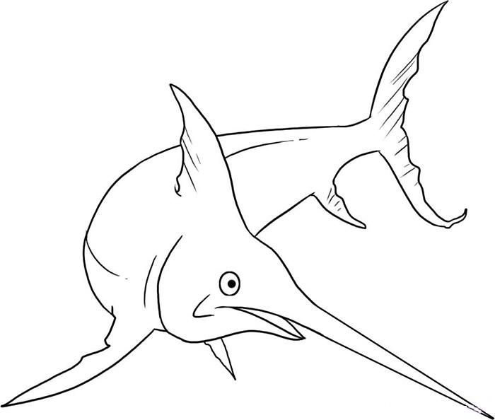 65 Sea Creature Templates