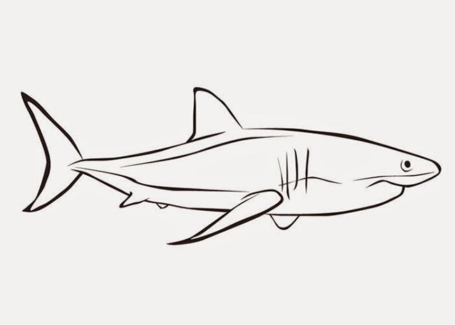 This is a graphic of Adaptable Printable Shark Template