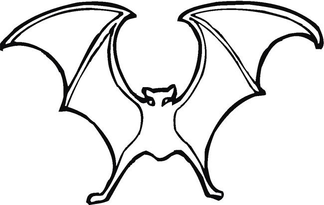 Bat Template - Animal Templates | Free & Premium Templates