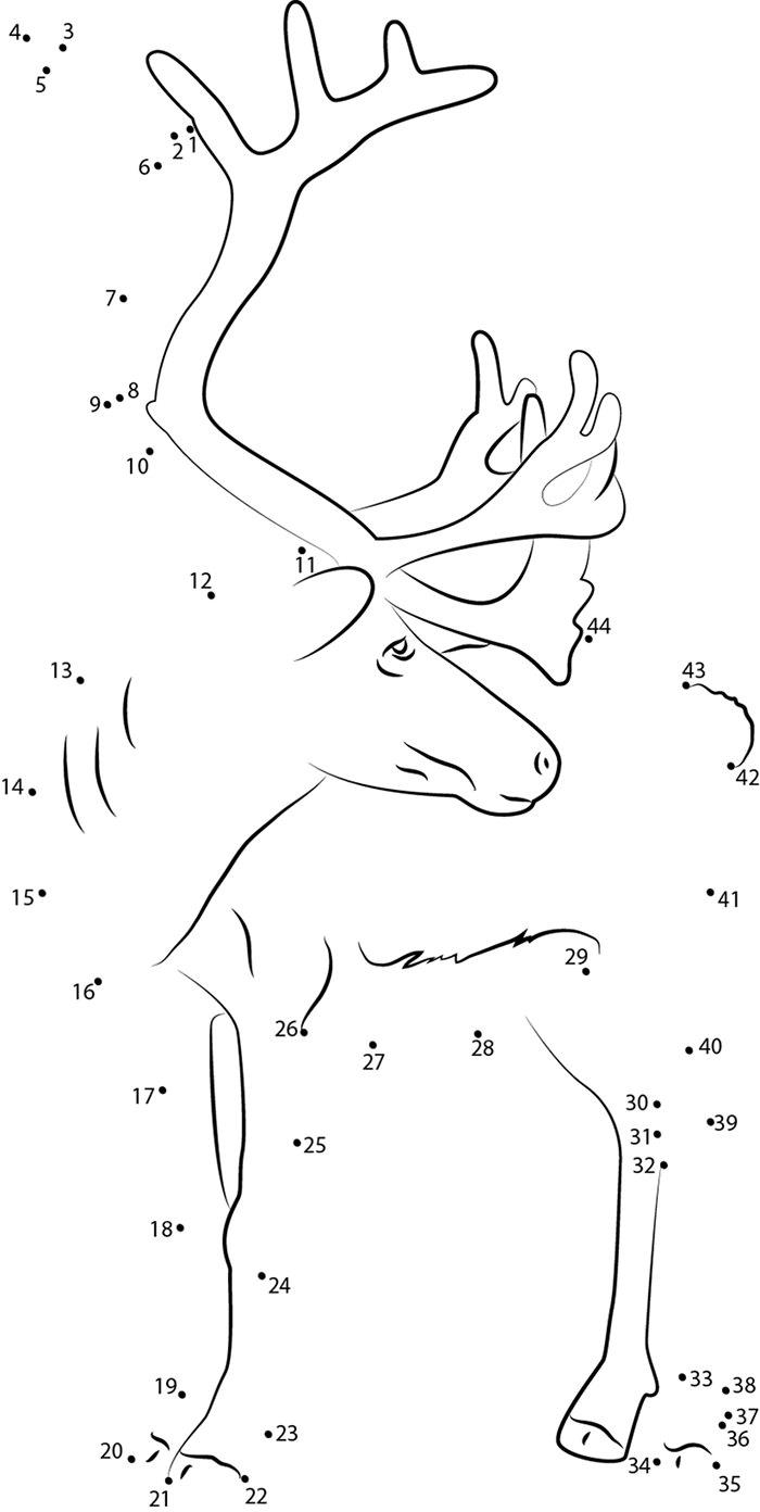 reindeer template animal templates free u0026 premium templates