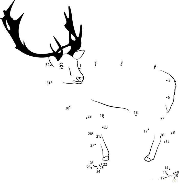 Reindeer Template Animal Templates Free Premium Templates