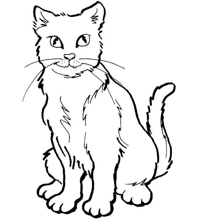 image relating to Cat Stencil Printable known as Cat Condition Template - Animal Templates No cost Quality Templates