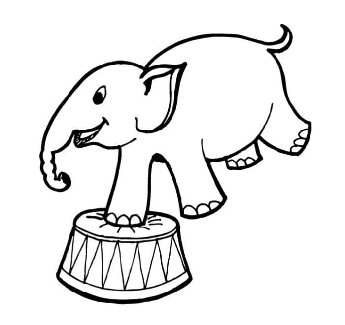 Elephant template animal templates free premium templates 742 maxwellsz