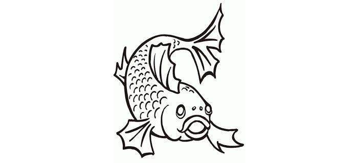 graphic relating to Free Printable Sea Creature Templates called 65+ Sea Creature Templates - Printable Crafts Colouring