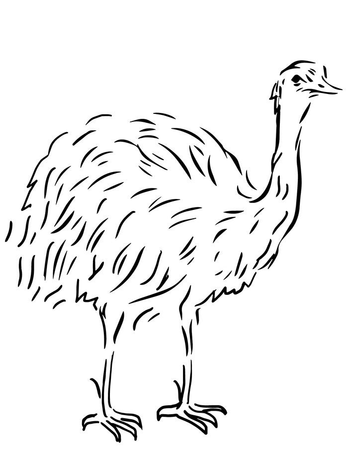 Australian Animal Coloring Page Template