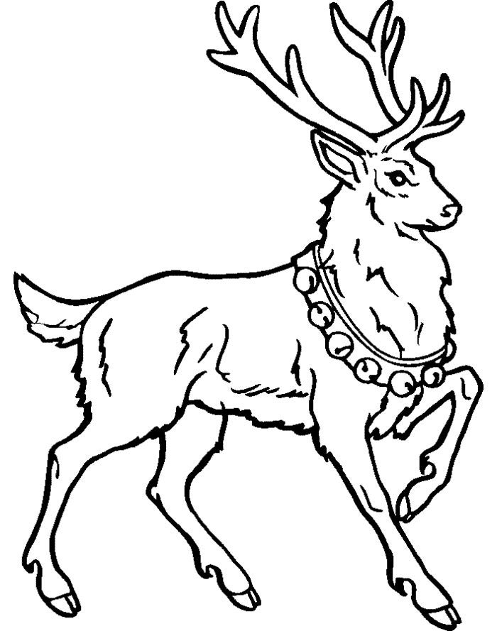 Reindeer Template - Animal Templates | Free & Premium Templates