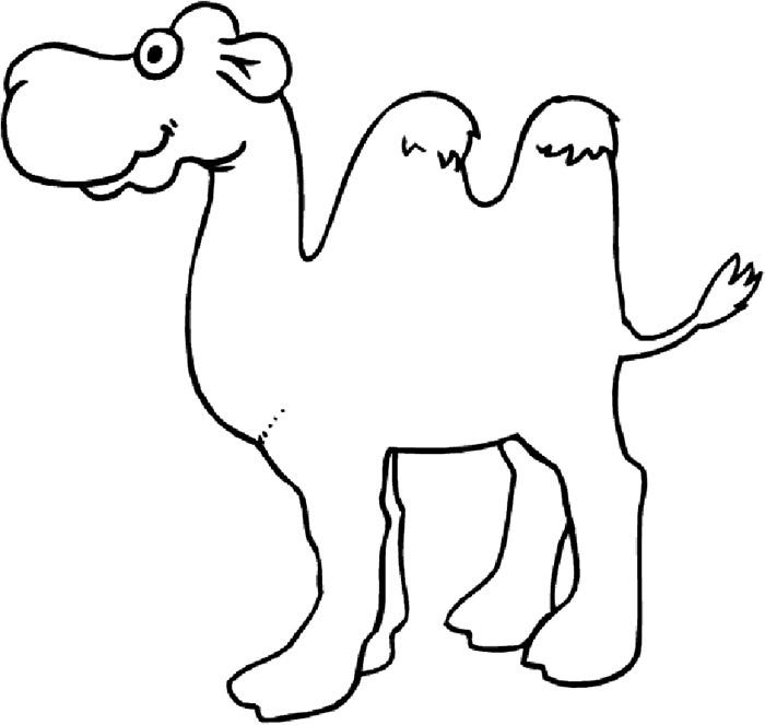 african camel coloring page