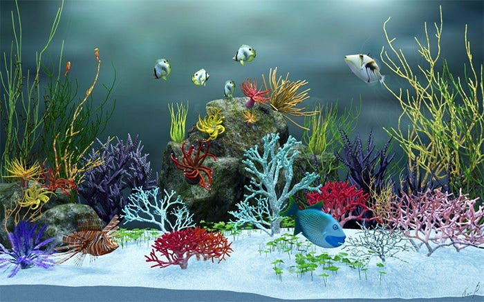 aquarium 3d background
