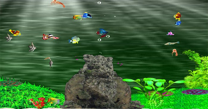 aquarium background sample