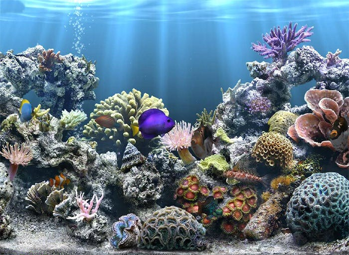 Aquarium Background Printable