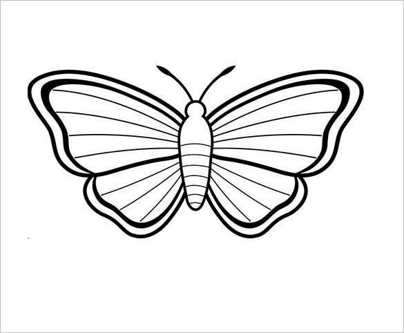 beautiful butterfly with stripes - Butterfly Template Free