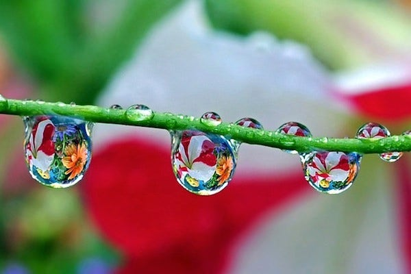 beautiful water drop photography