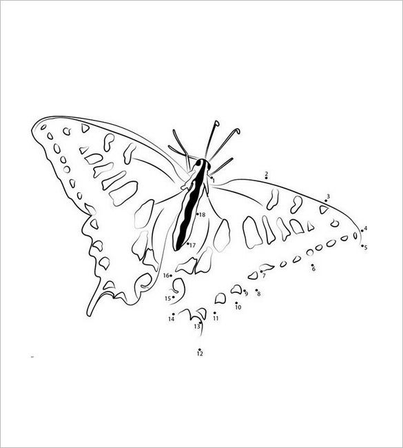 butterfly template dot to dot