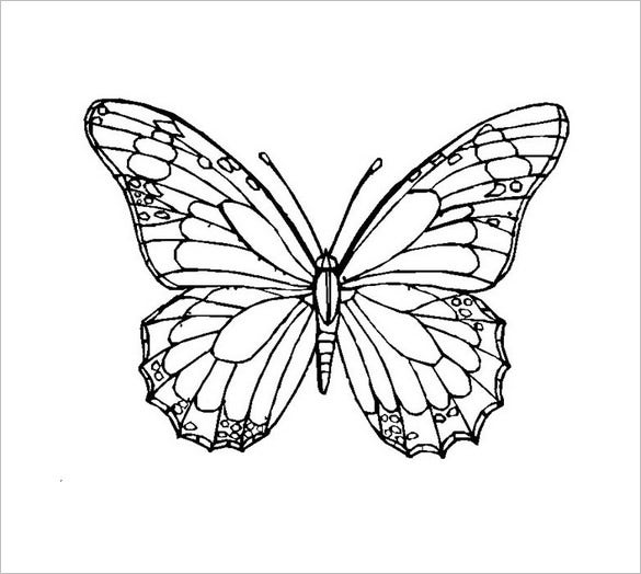 30+ Butterfly Templates – Printable Crafts & Colouring Pages ...