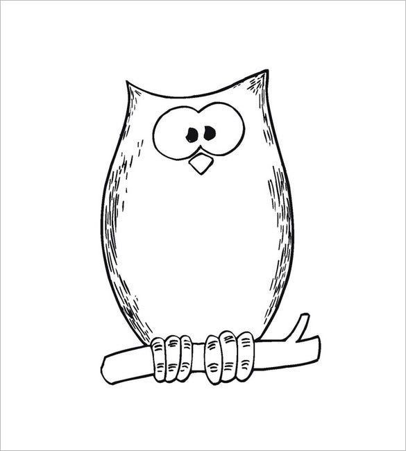 cartoon owl template1