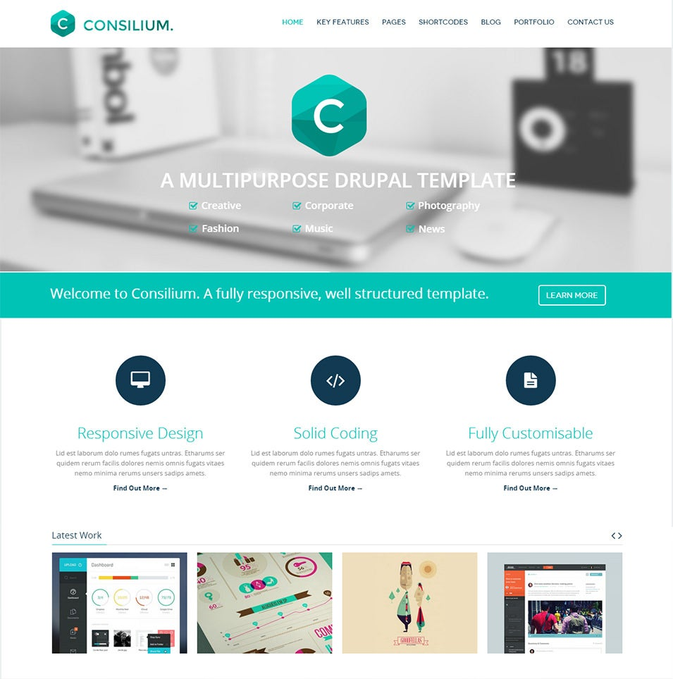 Parallax Drupal Website Templates Themes Free Premium Free