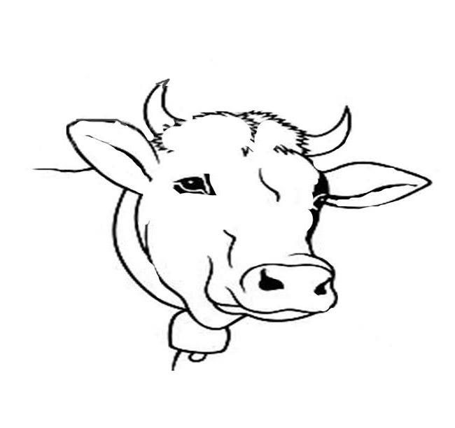 cow head template