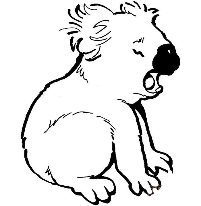 crying koala coloring page