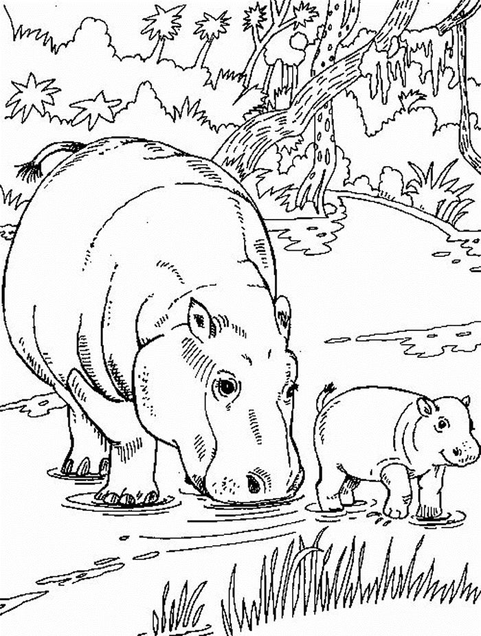 cute african animal coloring page