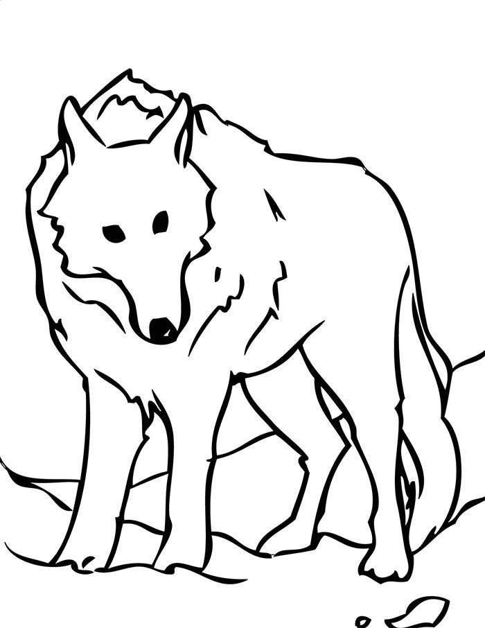 cute cartoon wolf template