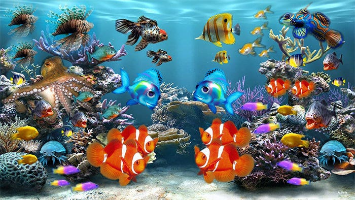 cute fishes aquarium background