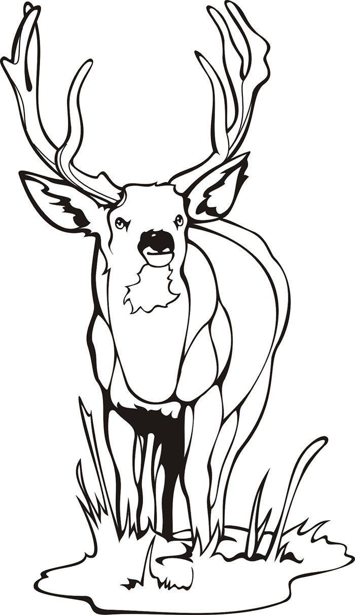 deer craft template