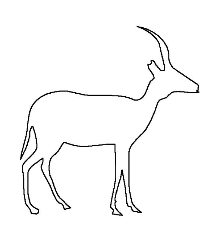 deer lineart template