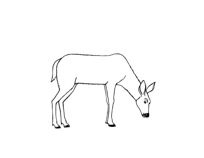 deer template for kids