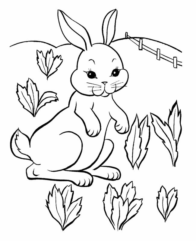 easter farm bunny coloring page