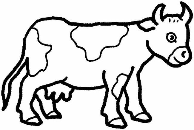 Cattle farm animal template