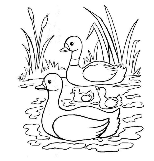 Pond Animal Cut Outs Coloring Coloring Pages