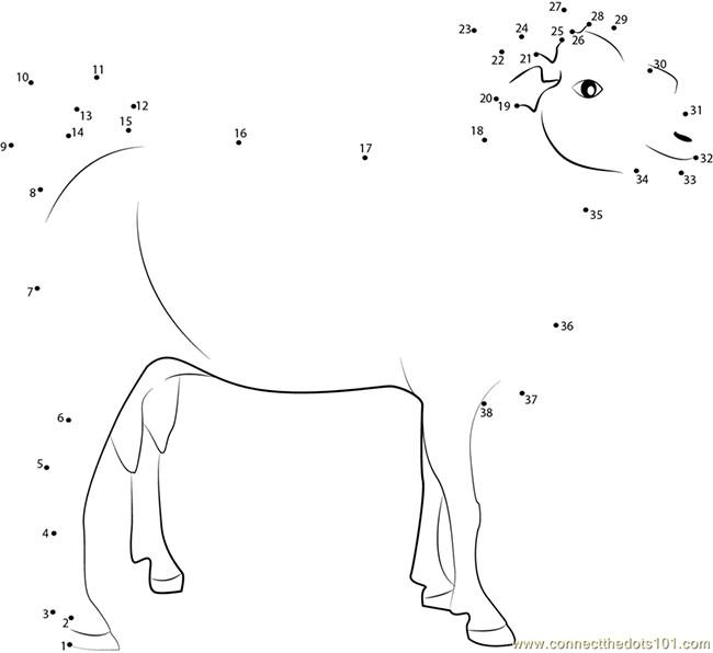 Farm Animal Template - Animal Templates | Free & Premium Templates