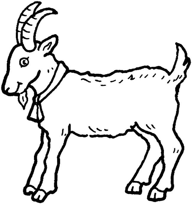 download - Outline Pictures Of Animals For Colouring