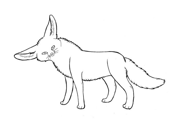 fennec african fox template