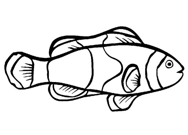 fish coloring page template 2