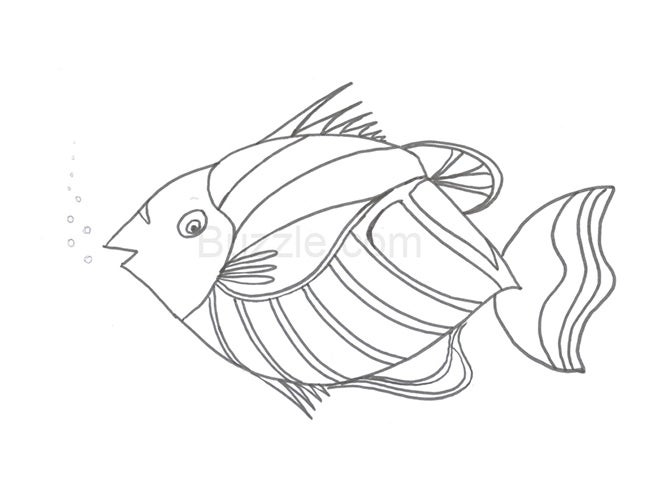 50 fish templates free premium templates Red Snapper Skeleton Diagram printable fish template