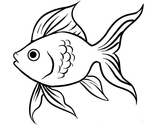 Line Drawing Of Fish : Fish template free printable pdf documents download