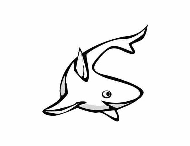 shark outline template